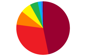 What an average young adult's budget might look like if shown on a pie chart.