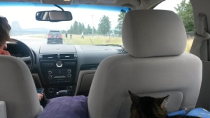 Inside our car while moving cross country