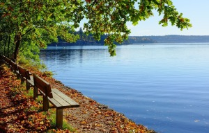 bench-1031398_1920-cropped